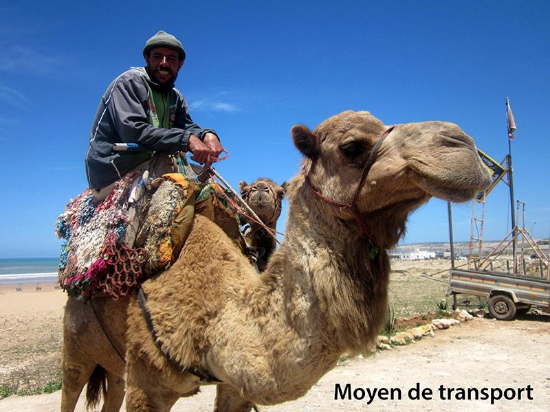 Moyen de transport